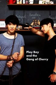 PlayBoy (and the Gang of Cherry) (2017)